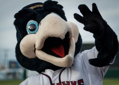 "Lancaster JetHawks mascot ""Kaboom.""   Photo: Kevin Karzin."