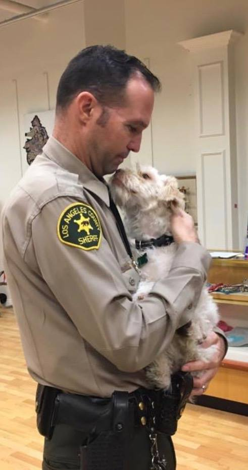 Deputy Kevin Duxbury holds a dog who may be a comfort pet, but not a lawful service animal.