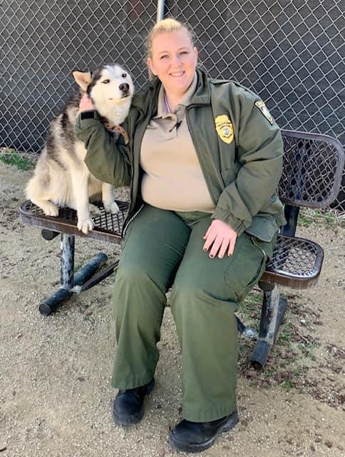adopt a pet castaic shelter