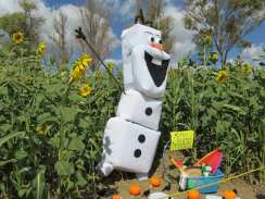 Scarecrow Alley Competition