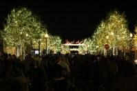 Light Up Main Street - 13