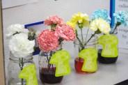 Flower Pigment Project