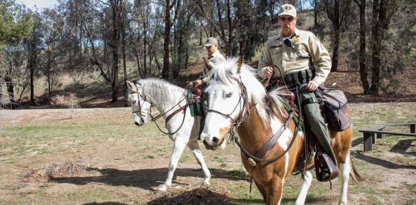 Deputy Frank Bausmith and Deputy Pedro Echeverria have had their horses for years and say they share a bond that is similar to that of a K-9 unit.