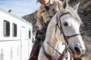 Deputy Echeverria checks his equipment before starting his ride.