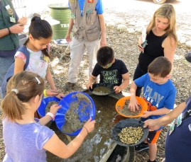 Placerita Canyon Nature Center Open House 5-14-2016