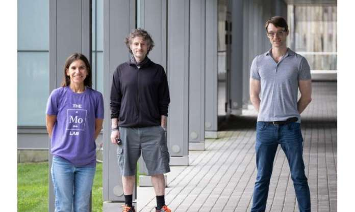 """Princeton lab discovers small """"Cain-and-Abel"""" molecule"""