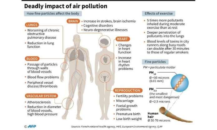 A poluição por PM2.5 é pequena o suficiente para entrar na corrente sanguínea através do sistema respiratório, levando à asma, câncer de pulmão e doenças cardíacas.