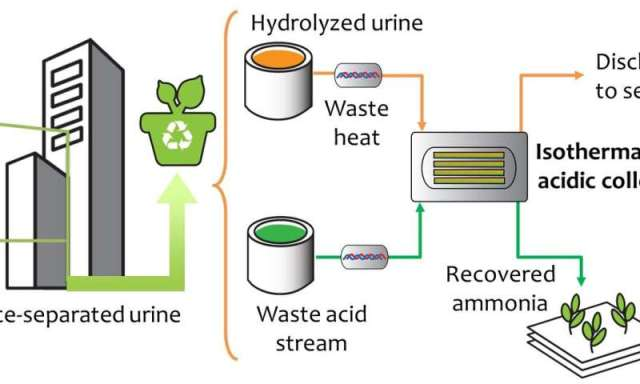 Sustainable recovery of nutrients from urine