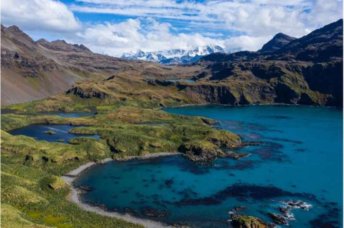 An eye in the sky: monitoring animal colonies using drones in the subantarctic