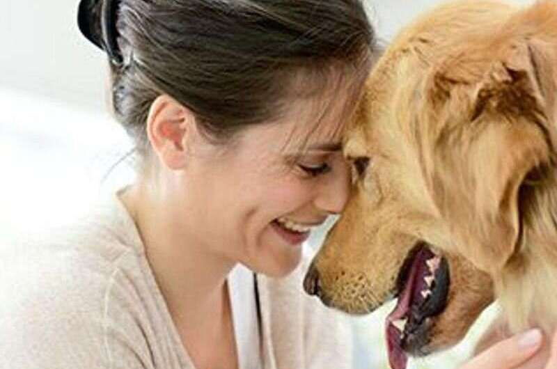 Pet dogs can alert owners to epileptic seizures
