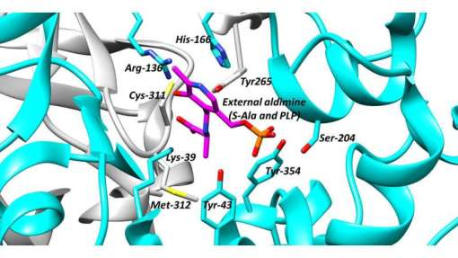 Scientists explore racemases and propose strategies for finding drugs that target these important enzymes.
