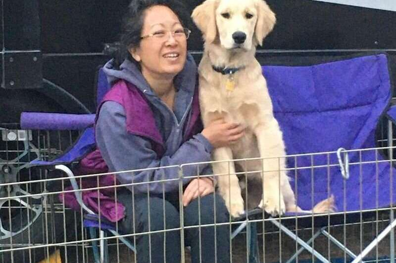 'Transmitted down the leash:' anxious owners, anxious dogs