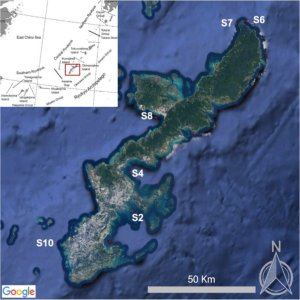 The new method reveals small microplastics across the Japanese subtropical ocean