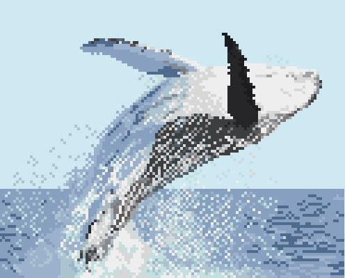 https://i1.wp.com/sd-5.archive-host.com/membres/images/164353825412355948/baleine_a_bosse.JPG