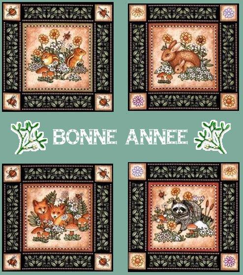 https://i1.wp.com/sd-5.archive-host.com/membres/images/164353825412355948/bonne_annee_2013.JPG