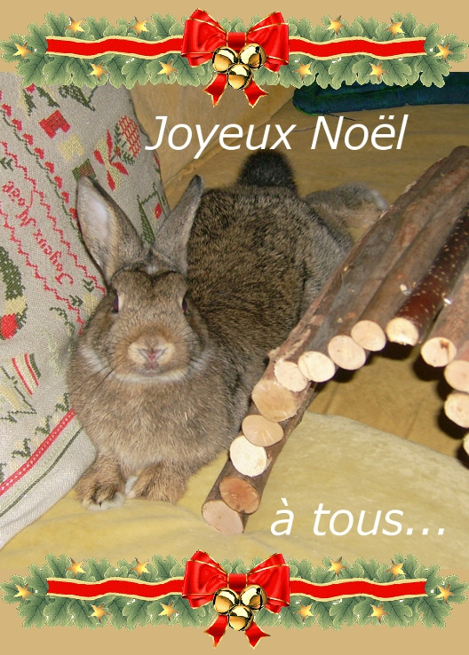 https://i1.wp.com/sd-5.archive-host.com/membres/images/164353825412355948/joyeux_noel_gribouillon.JPG