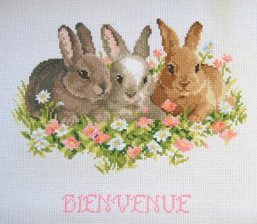 https://i1.wp.com/sd-5.archive-host.com/membres/images/164353825412355948/lapins_vervaco_printemps_termines.JPG