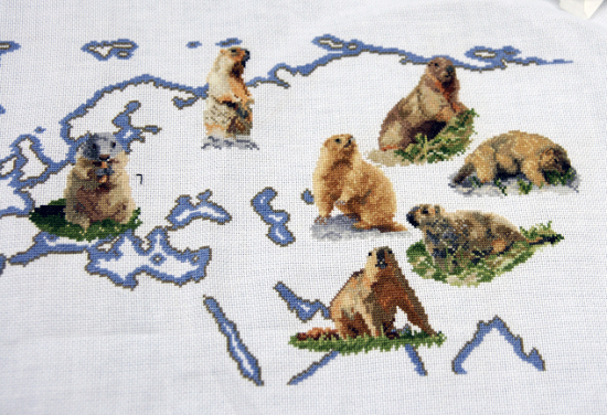 https://i1.wp.com/sd-5.archive-host.com/membres/images/164353825412355948/marmottes_1712_2.JPG