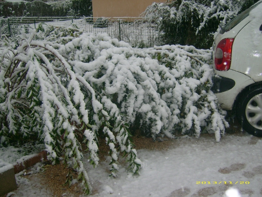 https://i1.wp.com/sd-5.archive-host.com/membres/images/164353825412355948/neige_2013_6.JPG