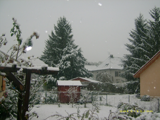 https://i1.wp.com/sd-5.archive-host.com/membres/images/164353825412355948/neige_2013_7.JPG