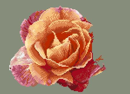 https://i1.wp.com/sd-5.archive-host.com/membres/images/164353825412355948/portrait_rose_7_1211.JPG