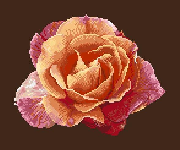 https://i1.wp.com/sd-5.archive-host.com/membres/images/164353825412355948/portrait_rose_7_jaquette.JPG
