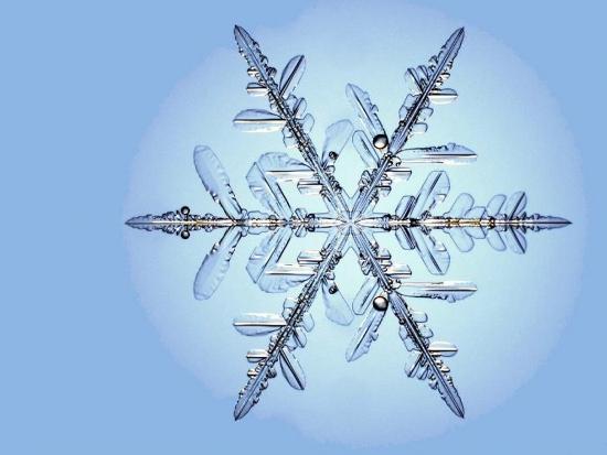 https://i1.wp.com/sd-5.archive-host.com/membres/images/164353825412355948/winter_pix_6.jpg