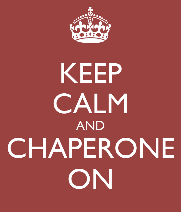 Image result for chaperone