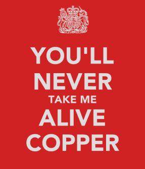 Image result for You'll Never Catch Me Copper