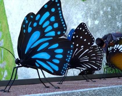 August 18 - The Butterfly Church
