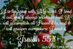Image may contain: nature, text that says 'It is the same with My word. I send it out, and it always produces fruit. It will accomplish all J want it to, and it will prosper everywhere J send it, Jsaiah 55:11 Bethany Sda Church Almere'
