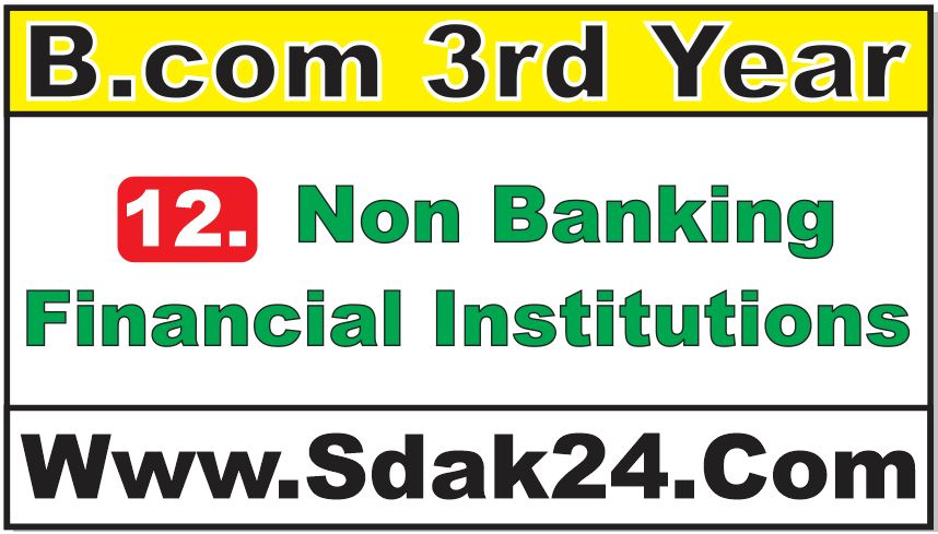 Non Banking Financial Institutions Bcom Notes