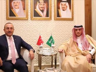 وزيرا الخارجية السعودي والتركي