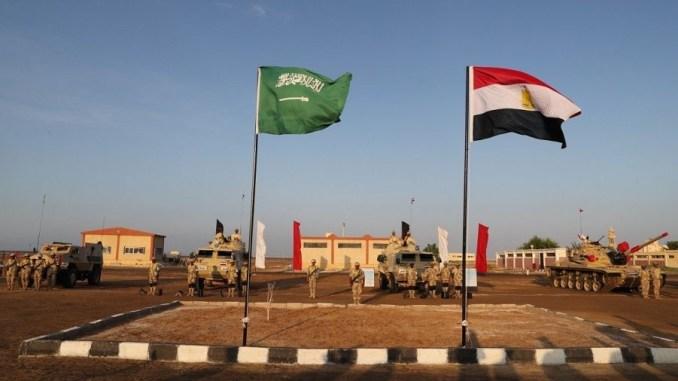 التدريب المصري- السعودي المشترك تبوك-4