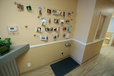 Pet Photo Wall
