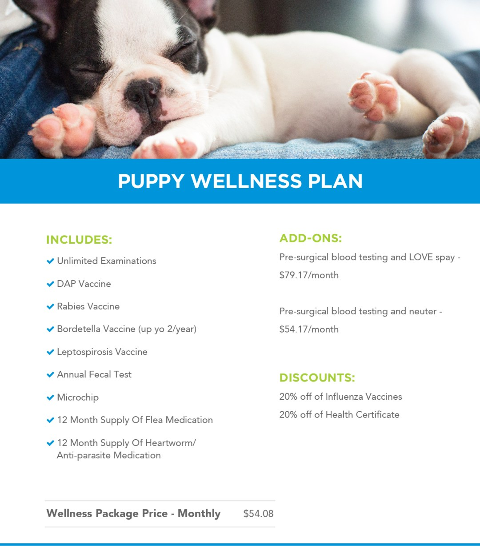 Puppy Wellness Plans Banner
