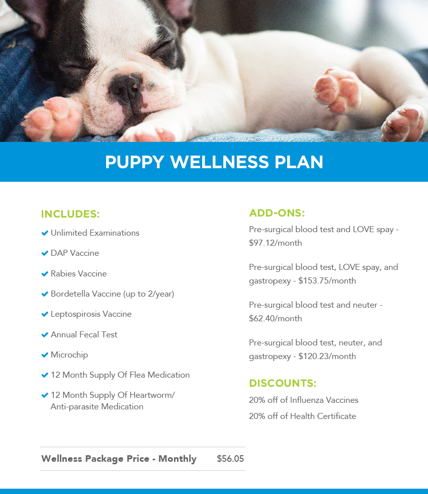 Puppy Wellness Plans Banner