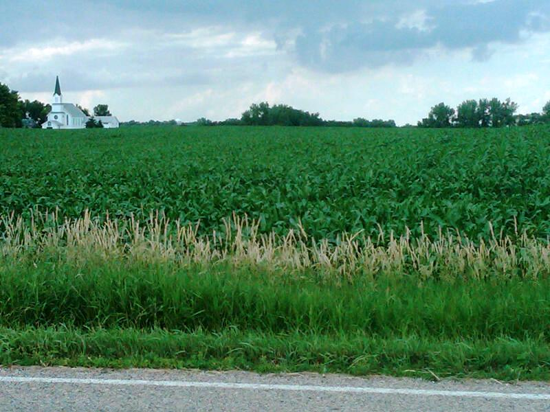 Dakota Utilization Corn South
