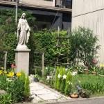 花の季節を迎えた聖書の植物の庭