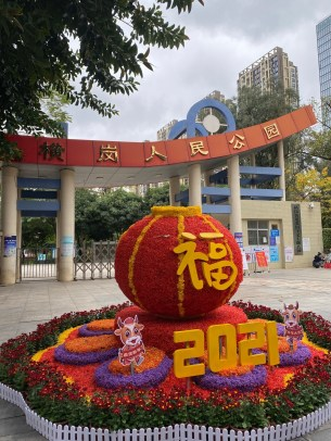 expat in china, An Expat in China – Reflection of 2020, SDE Seadragon Education