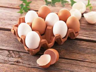 有关鸡蛋的有用小常识。(网络图片)
