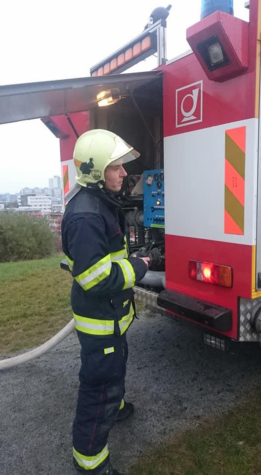 Požár porostu