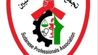 تجمع المهنيين يبارك دعوات التظاهر في الحادى والعشرين من أكتوبر