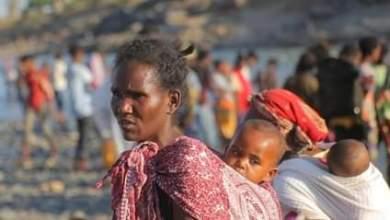 عاجل : الاتحاد الاوروبي : أربعة ملايين يورو دعم عاجل للاجئين بكسلا والقضارف