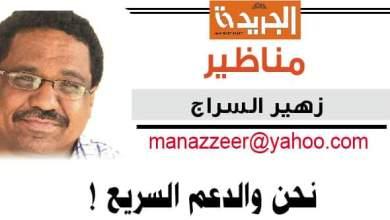 زهير السراج .. يكتب : نحن والدعم السريع !