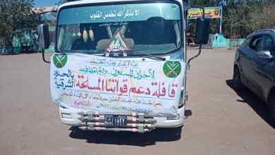 الإخوان المسلمون يسيرون قافلة دعم ومساندة للقوات المسلحة