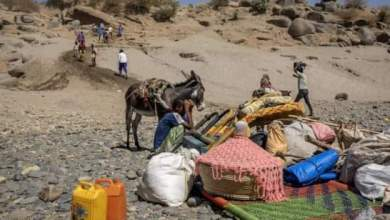 """عاجل : الأمم المتحدة: الوضع في تيغراي الإثيوبية الآن """"مقلق للغاية"""