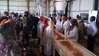 إفتتاح ثاني مصنع لتصنيع وتعبئة الصمغ العربي في السودان بنيالا