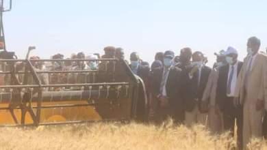 رئيس الوزراء يدشن حصاد القمح بمشروع الجزيرة