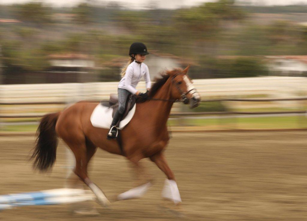 Steve Berry - Riding